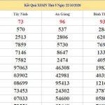Dự đoán kết quả XSMN Vip ngày 29/10/2020