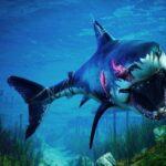 Nằm mơ thấy cá mập mang điềm báo gì ? Nên đánh lô số mấy ?